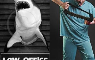 squalo avvocato